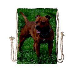 4 Full Staffordshire Bull Terrier Drawstring Bag (small)