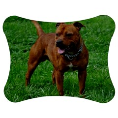 4 Full Staffordshire Bull Terrier Jigsaw Puzzle Photo Stand (bow)