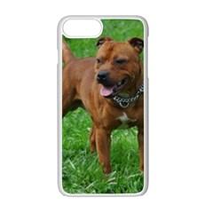 4 Full Staffordshire Bull Terrier Apple Iphone 7 Plus White Seamless Case