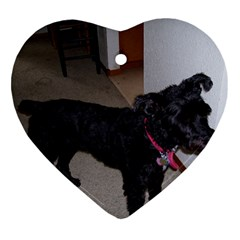 Bouvier Shaved Ornament (heart)