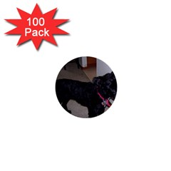 Bouvier Shaved 1  Mini Buttons (100 Pack)
