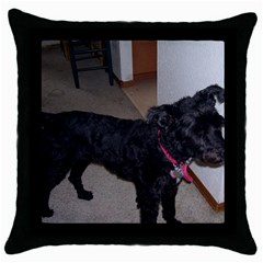 Bouvier Shaved Throw Pillow Case (black)