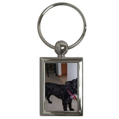 Bouvier Shaved Key Chains (rectangle)