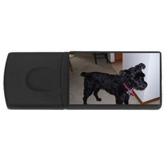 Bouvier Shaved Rectangular Usb Flash Drive