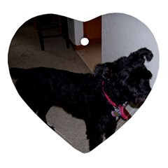 Bouvier Shaved Heart Ornament (two Sides)