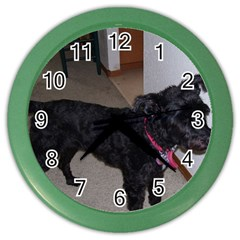 Bouvier Shaved Color Wall Clocks