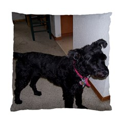 Bouvier Shaved Standard Cushion Case (one Side)