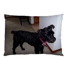 Bouvier Shaved Pillow Case