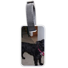 Bouvier Shaved Luggage Tags (one Side)