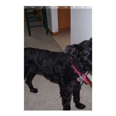 Bouvier Shaved Shower Curtain 48  X 72  (small)