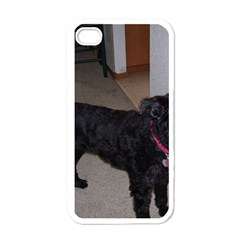Bouvier Shaved Apple Iphone 4 Case (white)