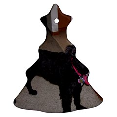 Bouvier Shaved Christmas Tree Ornament (two Sides)