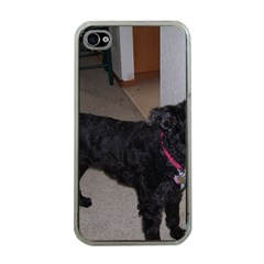 Bouvier Shaved Apple Iphone 4 Case (clear)