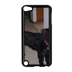 Bouvier Shaved Apple Ipod Touch 5 Case (black)