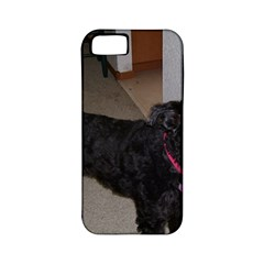 Bouvier Shaved Apple Iphone 5 Classic Hardshell Case (pc+silicone)