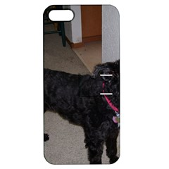 Bouvier Shaved Apple Iphone 5 Hardshell Case With Stand