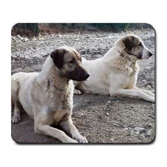 2 Anatolians Large Mousepads