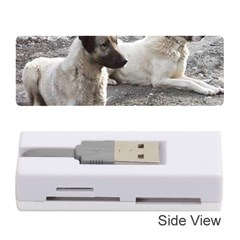 2 Anatolians Memory Card Reader (stick)
