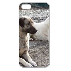 2 Anatolians Apple Seamless Iphone 5 Case (clear)