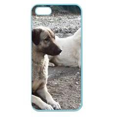 2 Anatolians Apple Seamless Iphone 5 Case (color)
