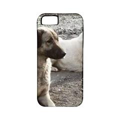 2 Anatolians Apple Iphone 5 Classic Hardshell Case (pc+silicone)