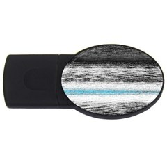 Ombre Usb Flash Drive Oval (2 Gb)