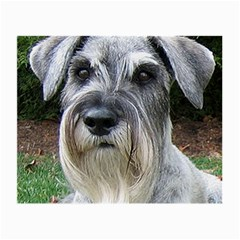 Standard Schnauzer 2 Small Glasses Cloth