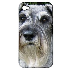 Standard Schnauzer 2 Apple Iphone 4/4s Hardshell Case (pc+silicone)