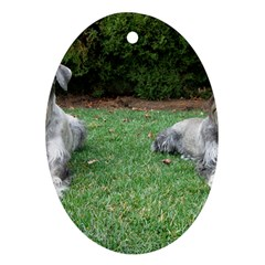 2 Standard Schnauzers Oval Ornament (two Sides)