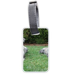 2 Standard Schnauzers Luggage Tags (one Side)