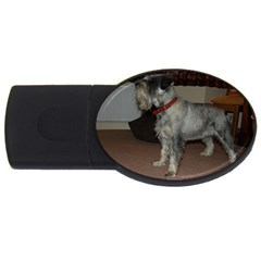 Standard Schnauzer Full Usb Flash Drive Oval (4 Gb)