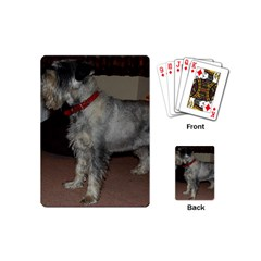 Standard Schnauzer Full Playing Cards (mini)