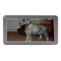 Standard Schnauzer Full Memory Card Reader (mini)