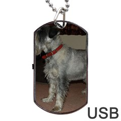 Standard Schnauzer Full Dog Tag Usb Flash (two Sides)