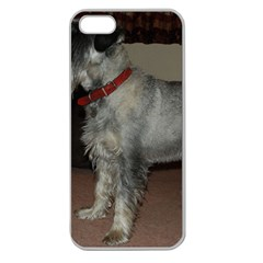 Standard Schnauzer Full Apple Seamless Iphone 5 Case (clear)