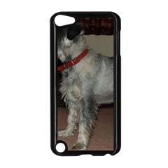 Standard Schnauzer Full Apple Ipod Touch 5 Case (black)