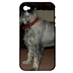 Standard Schnauzer Full Apple Iphone 4/4s Hardshell Case (pc+silicone)