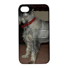 Standard Schnauzer Full Apple Iphone 4/4s Hardshell Case With Stand