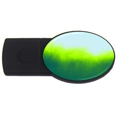 Ombre Usb Flash Drive Oval (2 Gb)