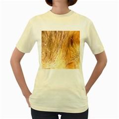 Nova Scotia Duck Tolling Retriever Eyes Women s Yellow T Shirt