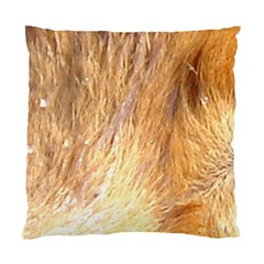 Nova Scotia Duck Tolling Retriever Eyes Standard Cushion Case (one Side)