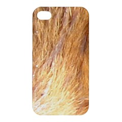 Nova Scotia Duck Tolling Retriever Eyes Apple Iphone 4/4s Hardshell Case