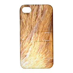 Nova Scotia Duck Tolling Retriever Eyes Apple Iphone 4/4s Hardshell Case With Stand
