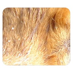 Nova Scotia Duck Tolling Retriever Eyes Double Sided Flano Blanket (small)