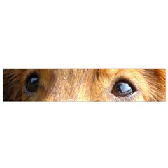 Nova Scotia Duck Tolling Retriever Eyes Flano Scarf (small)