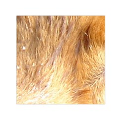 Nova Scotia Duck Tolling Retriever Eyes Small Satin Scarf (square)
