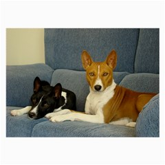 2 Basenjis Large Glasses Cloth (2 Side)
