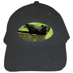 2 Full Flat Coated Retriever Black Cap