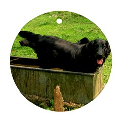 2 Full Flat Coated Retriever Ornament (round)