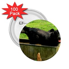 2 Full Flat Coated Retriever 2 25  Buttons (100 Pack)